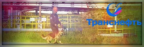 филиал ООО Транснефть-Охрана Западно-Сибирское МУВО